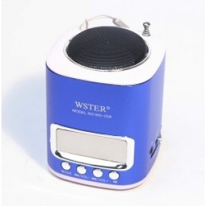 Портативная стерео аудио колонка WSTER WS-259 с MP3  и FM тюнером Blue (синий)