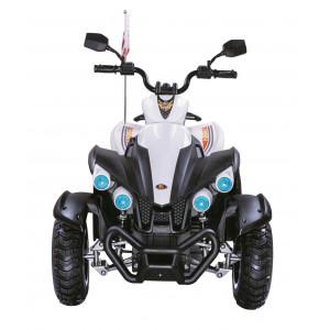 Детский квадроцикл Rivertoys P444PP